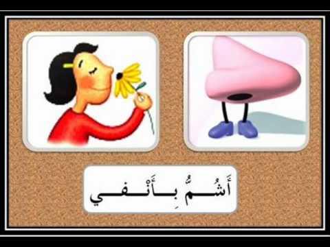 Berühmt Apprendre les cinq sens en Langue Arabe الـحواسُّ الـخَـمْـس - YouTube SW99