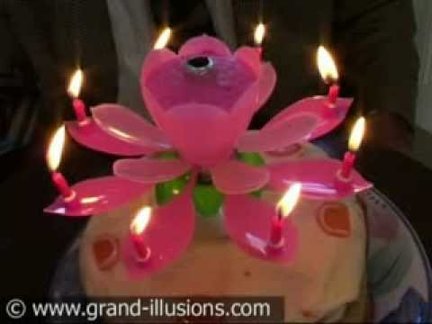 Birthday Candles That Open Like A Flower Atletischsport