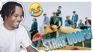 "Reacting To Stray Kids ""N/S (극과 극)"" Video (Street Ver.) 