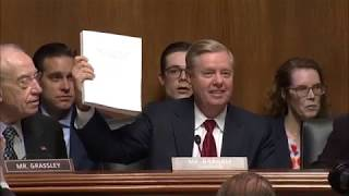 Lindsey Graham rips Peter Strzok, promises investigation how Russia probe started: raw video