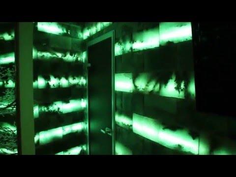 Соляная плитка с RGB подсветкой