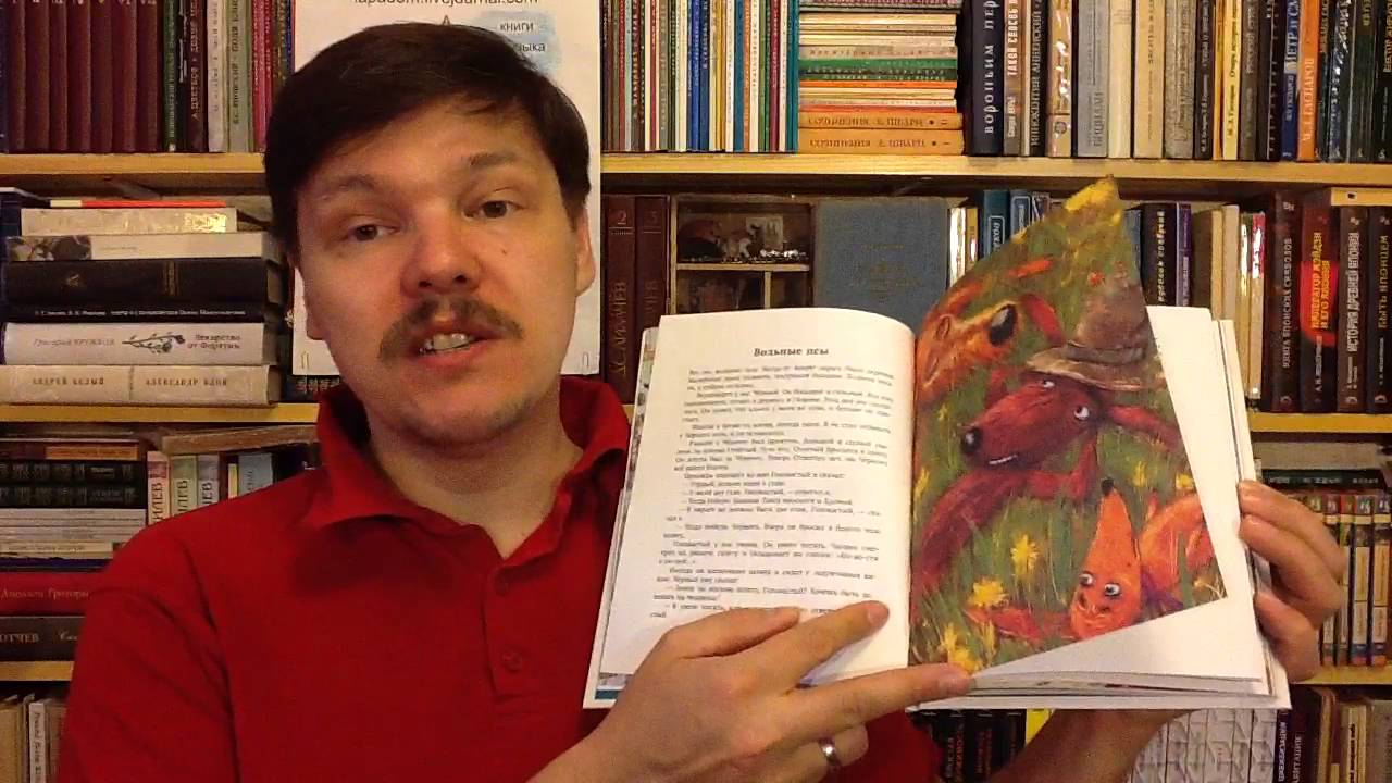 """Константин Сергиенко """"До свидания, овраг!"""""""