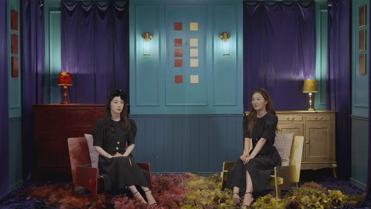 그림자 인터뷰 | 아이린과 아이린을 인터뷰 했다 (IRENE & IRENE were Interviewed)