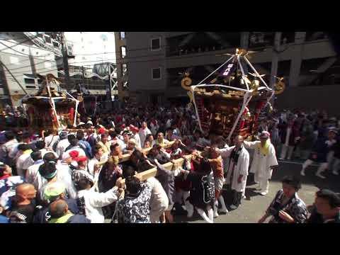 30年  茅ケ崎市「祝」大岡越前祭  神輿渡御のグランドフィナーレです。