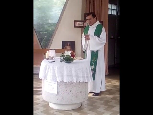 2 de 5 - Carmelitas Mensageiras do Espírito Santo em Lyon, França