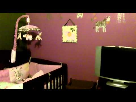 Jacana Theme Nursery