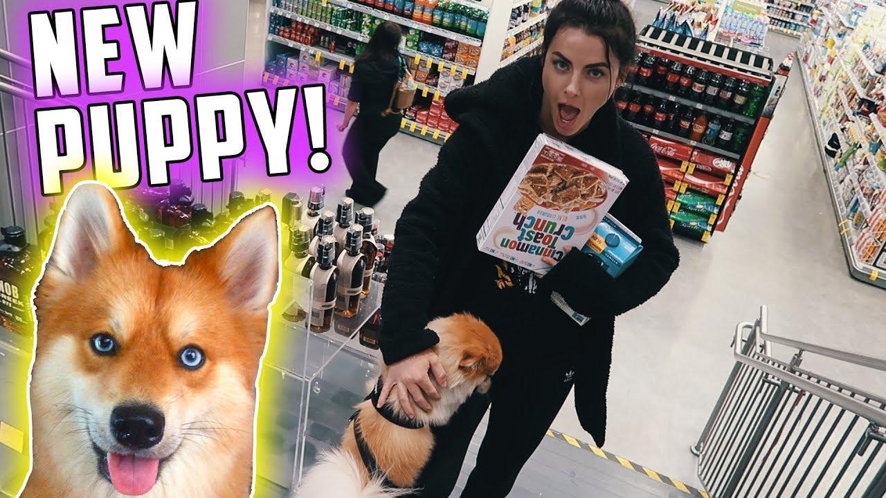 got-her-a-new-puppy-savage