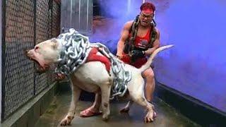 Самые ОПАСНЫЕ и ЗЛЫЕ Породы Собак в Мире