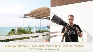 Comparing Nikon 600 f4 and 300 f2.8 Super tele Lenses