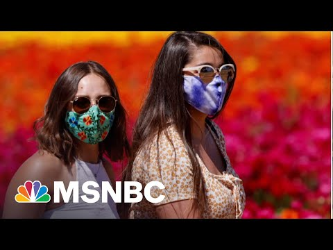 Debate Grows Over Wearing Masks Outdoors | Andrea Mitchell | MSNBC
