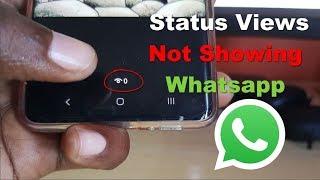 Status Views Not Showing Whatsapp Fix