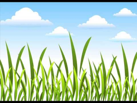 ฟรีรูปพื้นหลังพื้นหญ้า