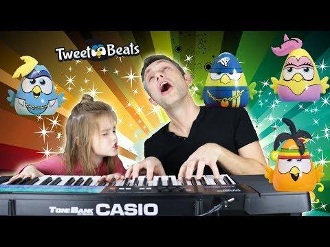 TWEET BEATS ! Création d'un groupe de musique avec des oiseaux interactifs chanteurs et musiciens
