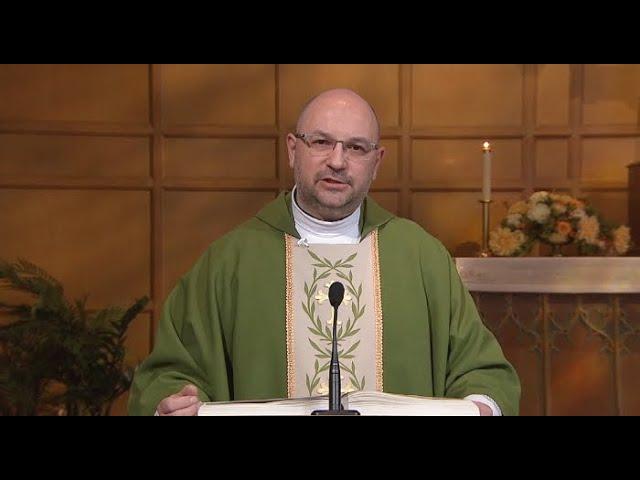 Sunday Catholic Mass Today Daily Tv Mass June 28 2020 Youtube