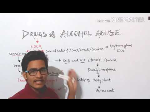 Awesome video on Drugs and Alcohol abuse/Must watch video.