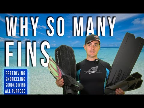 4 Types Of Swim Fins Explained - Snorkeling Vs Scuba Diving Vs Freediving