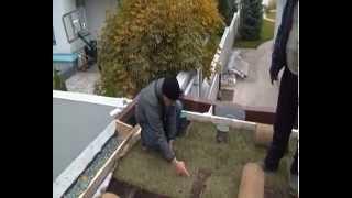 Укладка рулонного газона на крыше 3(, 2014-10-07T17:50:38.000Z)