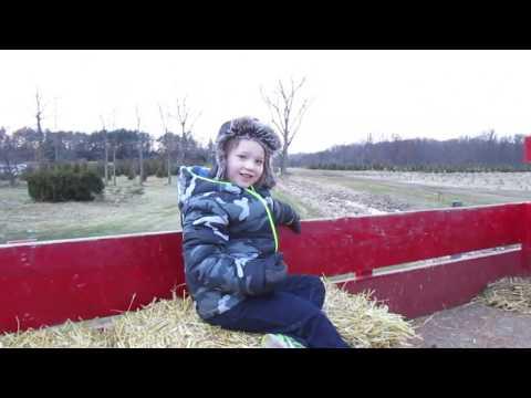 Hay Ride Through The Evergreens At Matthes Tree Farm In Ida Michigan