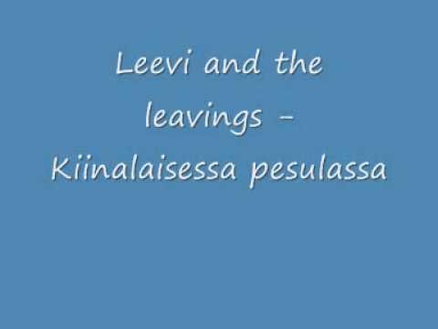 leevi-and-the-leavings-kiinalaisessa-pesulassa-pohjoiskarjala2008