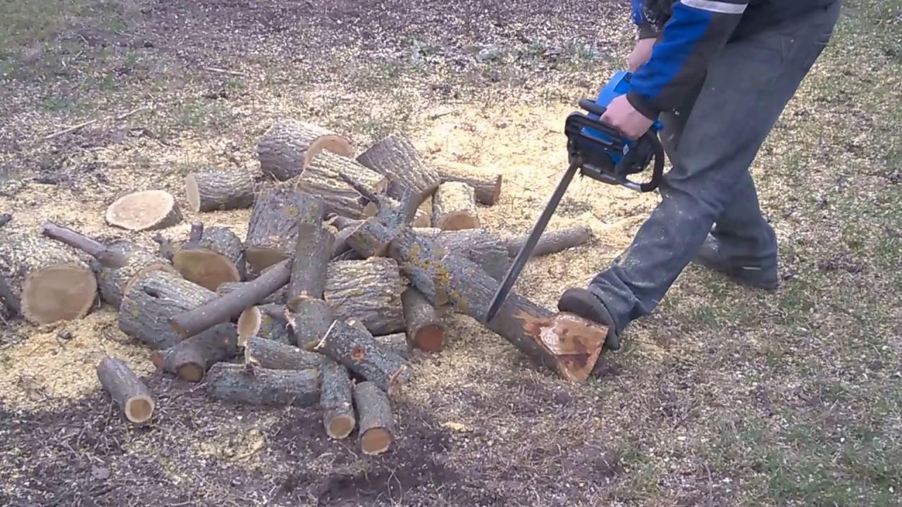 Лісничий на Херсонщині став жертвою другого за рахунком нападу браконьєрів