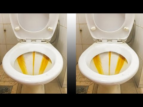 Put Vinegar Into a Toilet, and Watch What Happens! Clean A Toilet With Vinegar! Remove Hard Water St