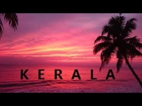 kerala INDIA Waving Palms Symphony