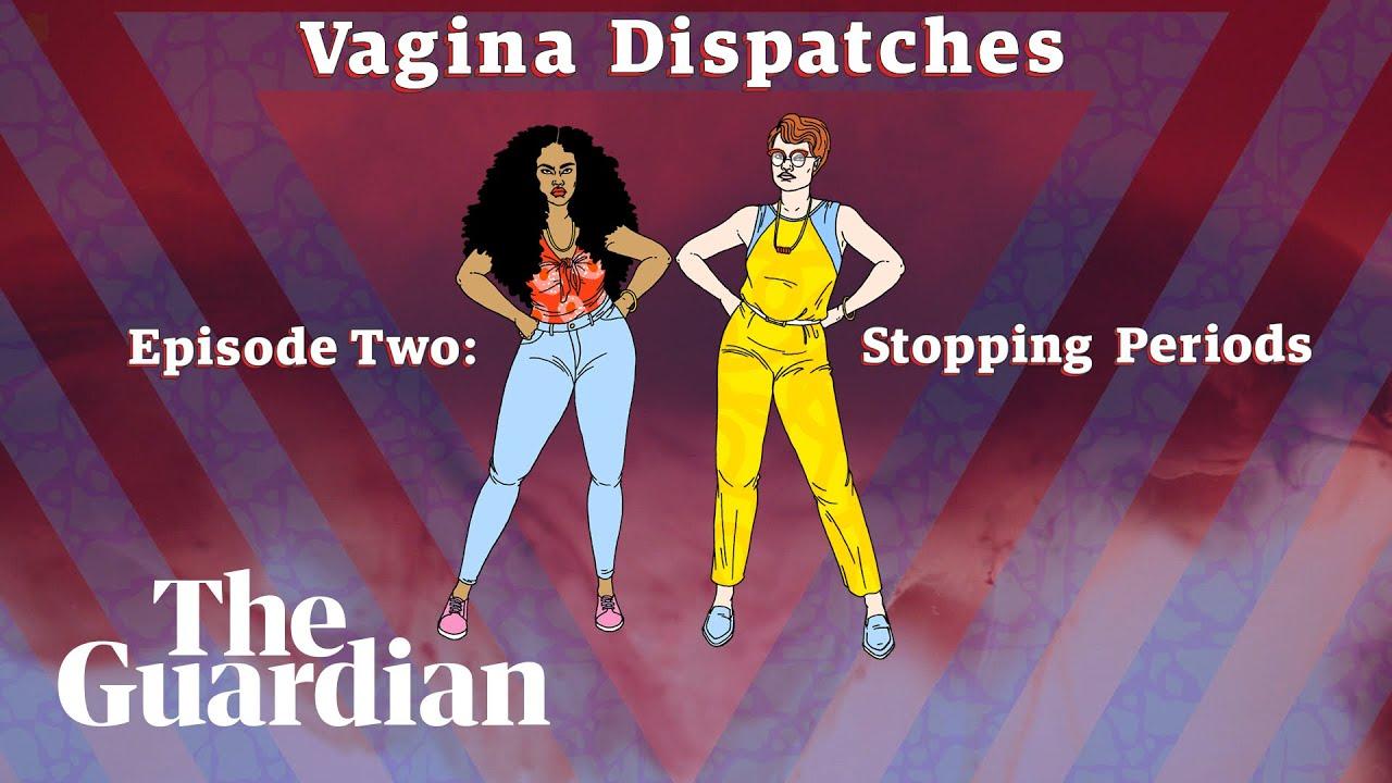 viginas der afrikaner