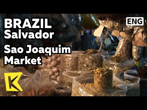 【k】brazil-travel-salvador[브라질-여행-살바도르]상-조아킴-재래시장/sao-joaquim-market/tropical-fruits/spices
