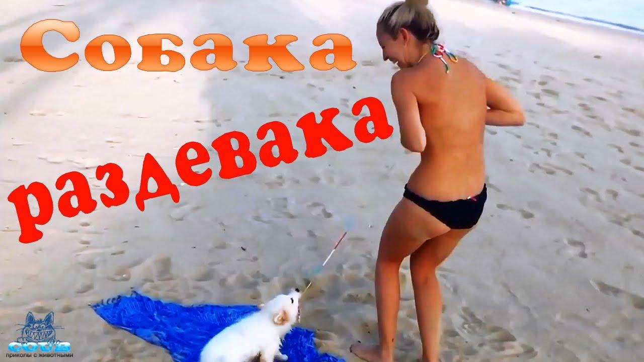 конверт голи та смишни на пляже последние лет