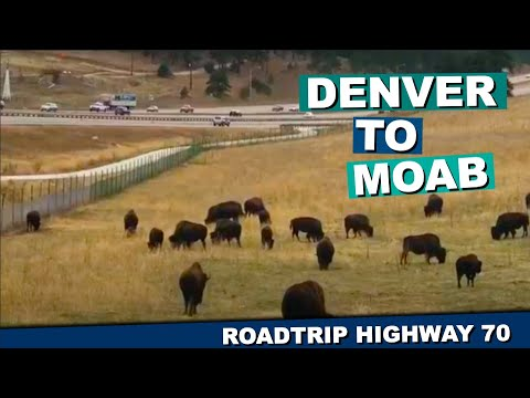 Bus It Babes Beginnings:  Denver To Moab And Everything In Between Road Tripping