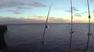 big island s tokunaga 2014 104lb ulua