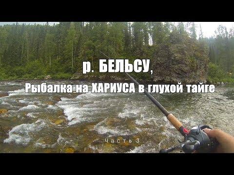 Ловя ХАРИУСа на труднодоступной реке Кузнецкого Алатау/река Бельсу, забрались в глухую тайгу.