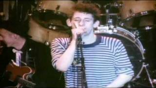 the pogues live at the town country club 1 of 4
