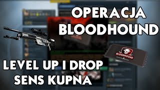 Jak najłatwiej expić, pierwszy drop i level up, sens kupna Operacji Bloodhound - CS:GO LipskyHD