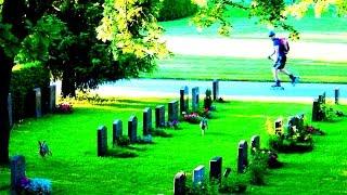 Швеция: Кладбище вошедшее в ЮНЕСКО в СТОКГОЛЬМЕ