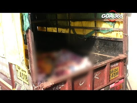 GOA 365 - Raid at a slaughterhouse  But was it illegal