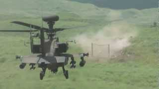 AH-64D 30mmチェーンガンの威力 (富士総合火力演習2012、2012/08/25)