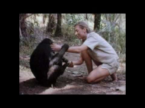 Jane Goodall's Journey