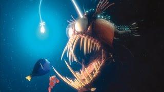 Morskie kreatury, które istnieją! cz.2