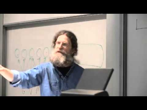 Robert Sapolsky - Emergence and Complexity