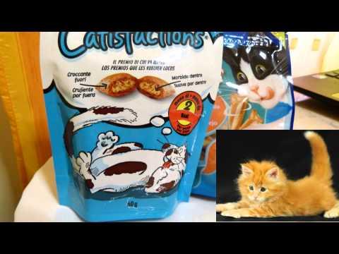 Симптомы при смене зубов у котят!Специальный корм и прикормки!