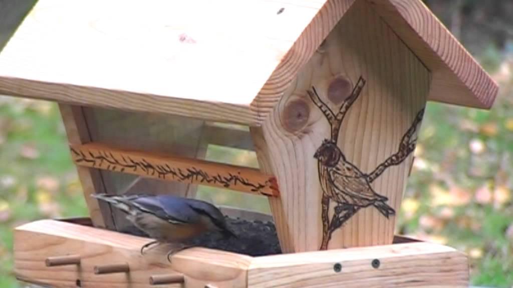 Mangeoire r servo oiseaux youtube - Distributeur de graines pour oiseaux ...