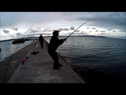 Fishing For Conger....Brixham Breakwater.