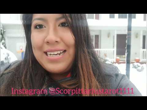 Evolution Of Scorpio: Scorpion, Eagle, & Phoenix