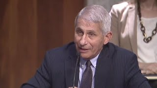 Fauci warns virus cases could hit 100,000 per day