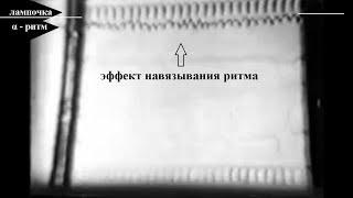 «Круглый стол» / Киево-Печерская Лавра / 2017 Механизм управления поведением