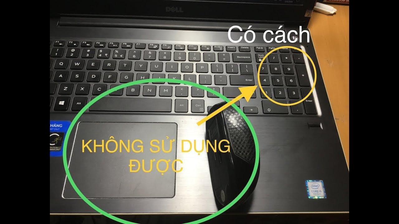 Làm gì khi Mouse và Touchpad Laptop không sử dụng được? Thủ thuật máy tính