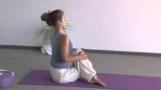 Yogastunde Fortgeschrittene mit Surya Namaskar Vinyasas - 75 Minuten