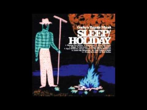 Gorky's Zygotic Mynci - Single to faraway