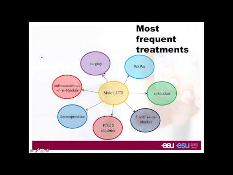 Urowebinar: New approaches for LUTS management due to BPH